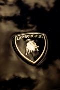lamborghini-logo-cofano