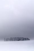 bufera-di-neve