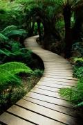 giardino-natura