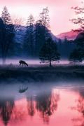 nebbia-tramonto-natura