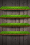 muschio-e-legno