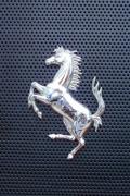 ferrari-logo-cavallo-rete